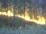prescribed fire 1 m
