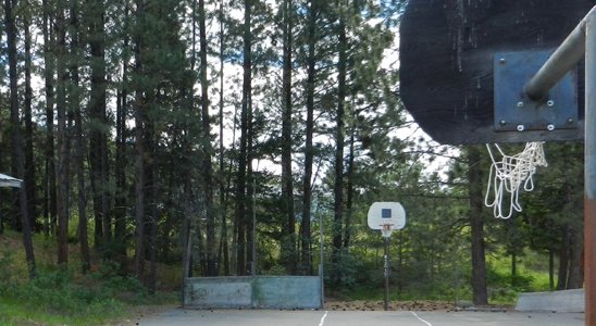 basketball court m