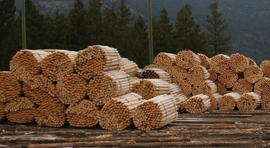 Aspen Planers Post and Rail (CIB Land Lease)